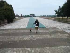 ピョンピョン橋