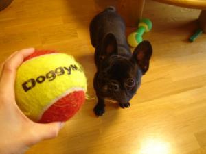 ボールでち!