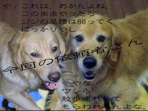1013rikiyasuCIMG2752.jpg