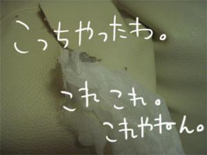 11286CIMG4346.jpg