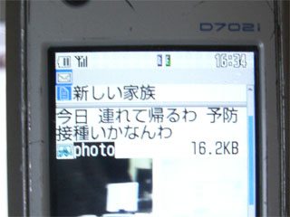 20070707172350.jpg
