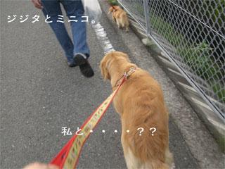 20070712011407.jpg