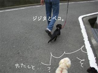 20070712011426.jpg