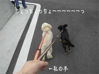 20070712011434.jpg