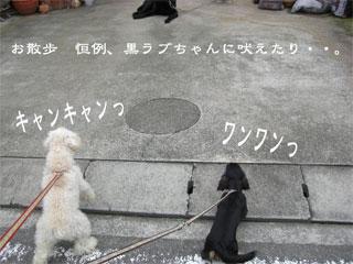 20070712011511.jpg
