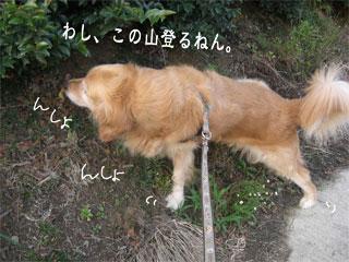 20070712011557.jpg