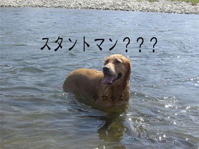 やちゃこ9CIMG1748