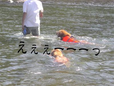 りきお7CIMG1768