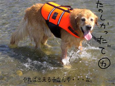 りきお9CIMG1769