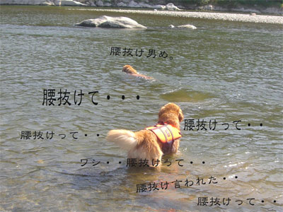 力男腰抜けCIMG1766