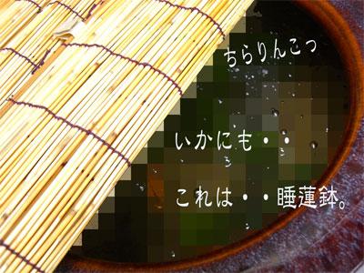 はち1CIMG1826