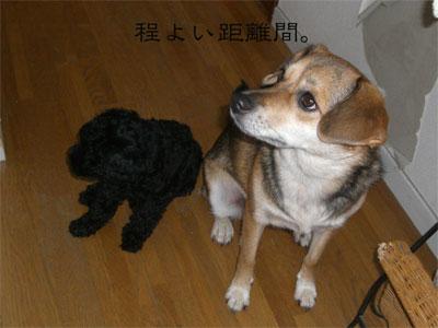 る&あんでぃCIMG1447