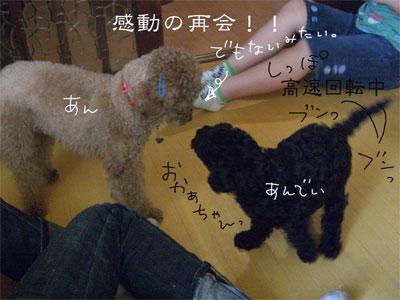 あん&あんでぃCIMG1853