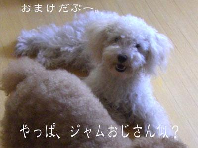 じゃむCIMG1872