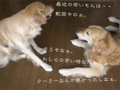 りきやすCIMG8976