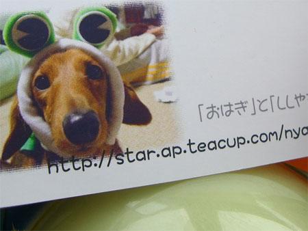 らんぷうCIMG4446