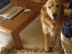 jiji2CIMG3465.jpg