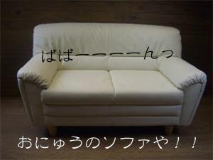 so1CIMG4107.jpg