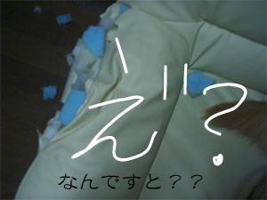 so4CIMG4175.jpg