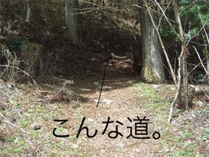 t00CIMG9213.jpg