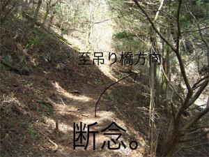 t00CIMG9214.jpg