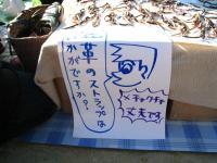 20081101_34_convert_20081101204650.jpg
