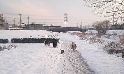 これは10日の雪遊び風景です。