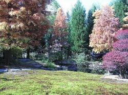 久保惣美術館の庭