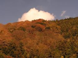 褐色の山々