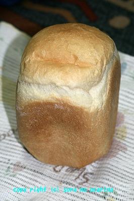 IMG_602パン