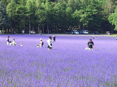 2004年7月18日富良野にて 022