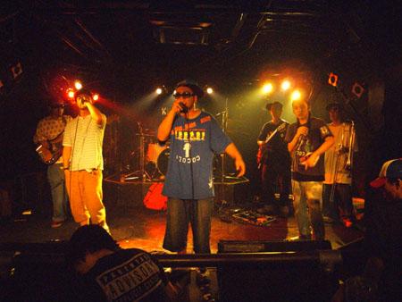 キングコブラ 32