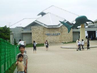 水族館 1