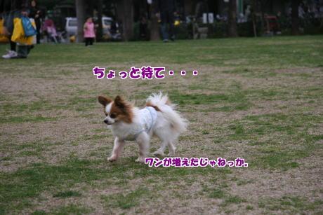 05IMG_1346-5.jpg
