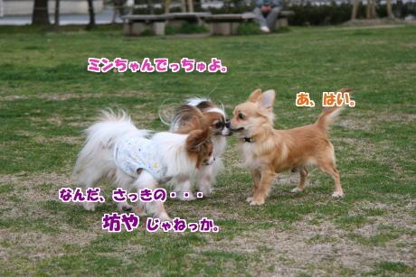 09IMG_1358-5.jpg