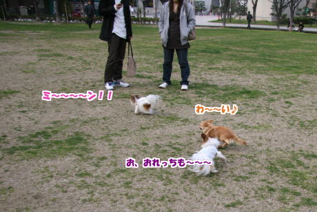 12IMG_1365-5.jpg