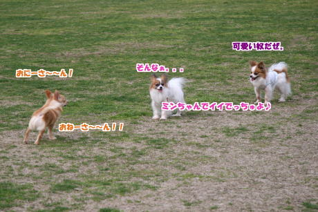 13IMG_1366-5.jpg