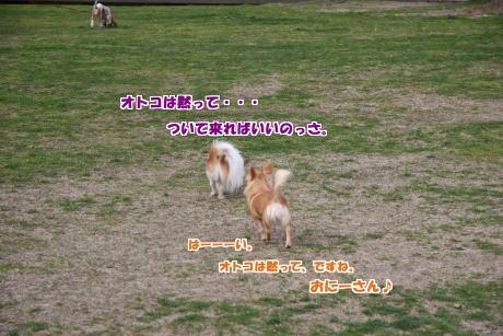 15IMG_1371-5.jpg