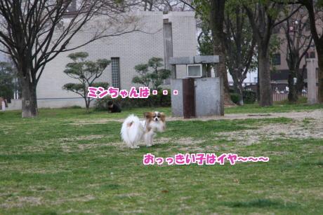 17IMG_1440-5.jpg
