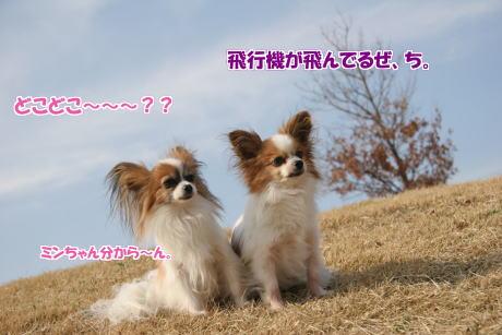 IMG_0969-5.jpg