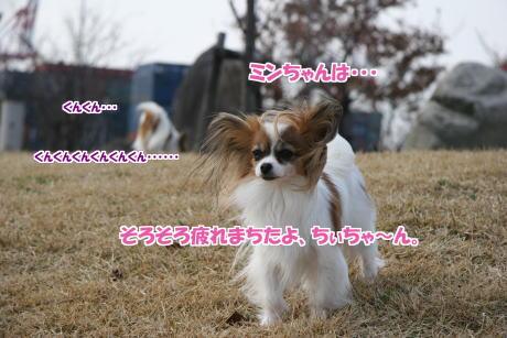 IMG_1018-5-5.jpg