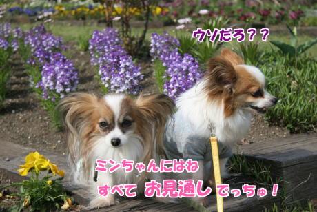 IMG_2502-1.jpg