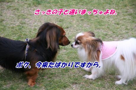 IMG_3013-77.jpg