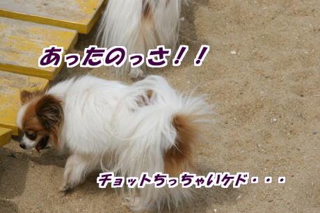 IMG_3202-7.jpg