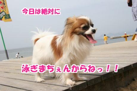 IMG_3232-7.jpg