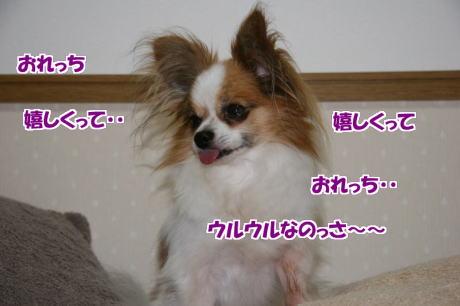 IMG_4638-77.jpg