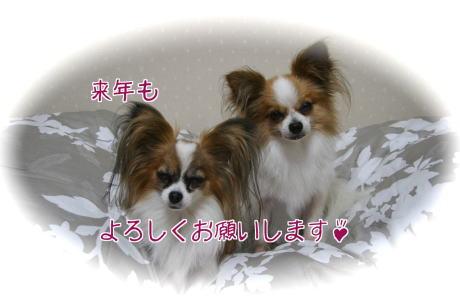IMG_4667-4.jpg