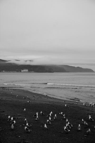 グレースケールの海