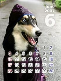 2007-06by_yururi.jpg