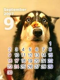 2007-09.jpg